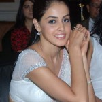 GENELIA SAREE 150x150 Genelia Dsouza and Riteish Deshmukh Wedding Pics and Video
